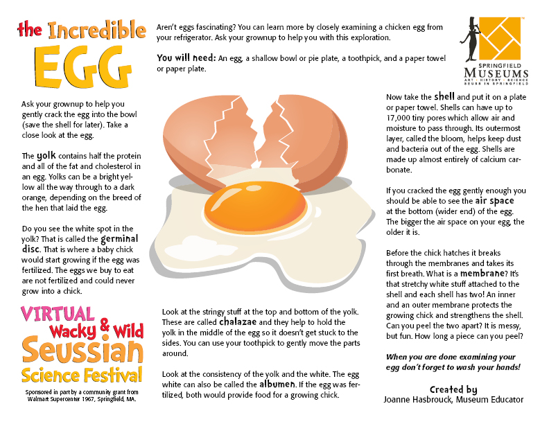 The Incredible Egg Activity