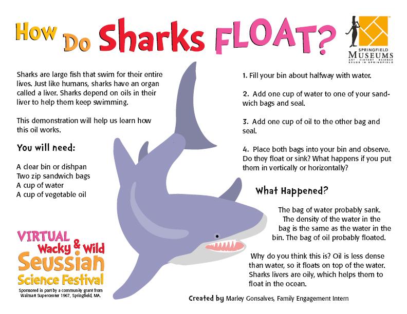 How Do Sharks Float?