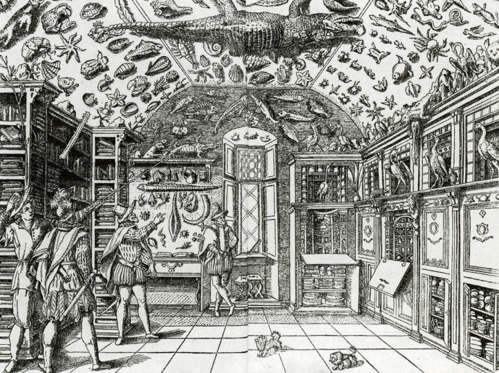 16th century print of a museum gallery