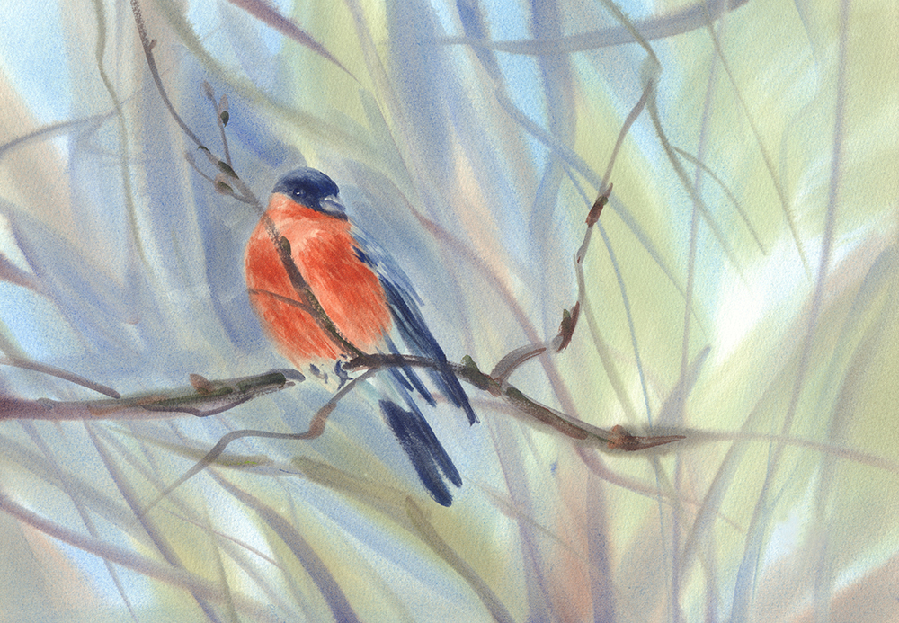 Birds And Botanicals In Watercolor